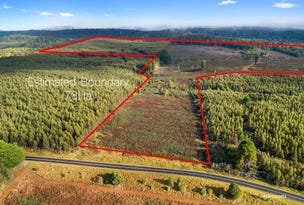 Lot 1 Murchison Highway, Parrawe, Tas 7321