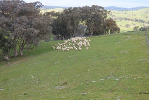 Lot 1, 2100 Taylor's Flat Road, Boorowa, NSW 2586