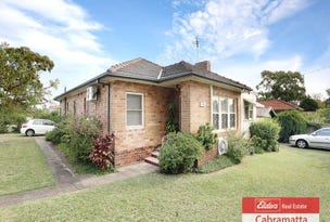 245 Wellington Road, Chester Hill, NSW 2162