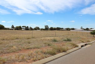 19 (Lot 1208) Loton Dr, Northam, WA 6401