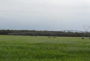Carraman Old Wagga Road, Narrandera, NSW 2700