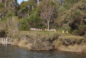 44 Sabina Drive, Molloy Island, WA 6290