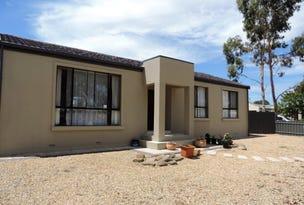 17 Cameron Court, Murray Bridge, SA 5253