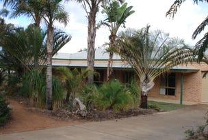 3 Calythrix Court, Geraldton, WA 6530