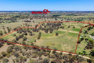 168 Euchareena  Road, Molong, NSW 2866
