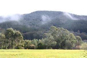 CA S60 Morses Creek Road, Wandiligong, Vic 3744
