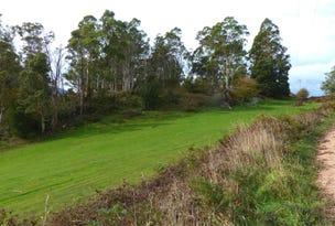 314 Scotts Road, Mole Creek, Tas 7304