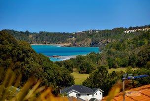 3 Coachmans Close, Sapphire Beach, NSW 2450