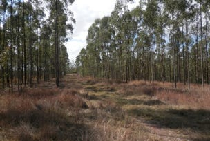 Lot 163 Paddys Flat Rd, Tabulam, NSW 2469