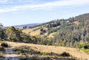 1/234 Cherry Farm Road, Underwood, Tas 7268
