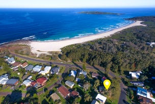99 Malibu Drive, Bawley Point, NSW 2539