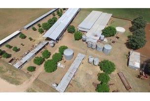 127 Webb's Siding Rd, Narromine, NSW 2821