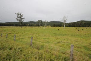 101, 102, 133, 142, Smiths Creek Road, Copmanhurst, NSW 2460