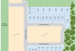 Lot 1 Bourke Crescent, Nudgee Place, Nudgee, Qld 4014