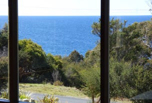 25-27 Treloggen Drive, Binalong Bay, Tas 7216