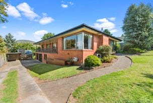 43 Pioneer Avenue, New Norfolk, Tas 7140