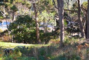 1 River Avenue, Heybridge, Tas 7316