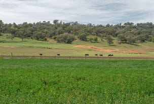 Tryalion 6280 Bylong Valley Way, Bylong, NSW 2849