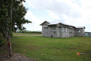 288 Old Tully Road, Midgenoo, Qld 4854