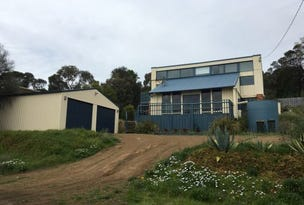 90 Blessington, South Arm, Tas 7022