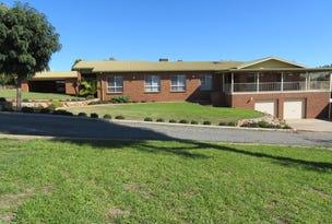 45 Mount Street, Gundagai, NSW 2722