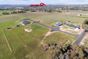 Lot 6 & 10 Foys Road, Molong, NSW 2866