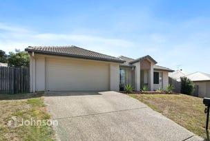 81 High Street, Blackstone, Qld 4304