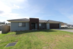 20 Wright Place, Goulburn, NSW 2580