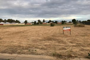 Lot 97, TEDDYS Lane, Barham, NSW 2732