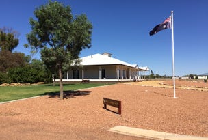 2 Little Curlew Court, Longreach, Qld 4730