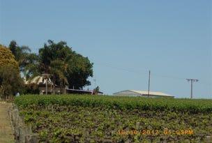 296 & A113 McKenzie  & Brand Roads, Barmera, SA 5345