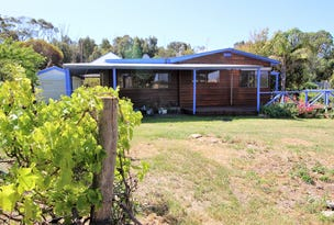 45 Frenchman Road, Mena via, Coulta, SA 5607
