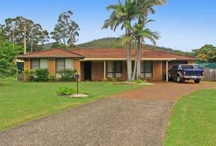 11 Heron Place, Lakewood, NSW 2443