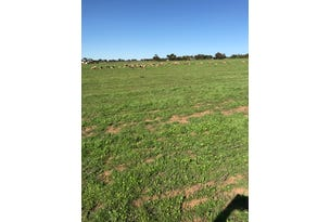 Lot 520 Brand Highway and Lot 100 Ruddock Rd, Greenough, WA 6532