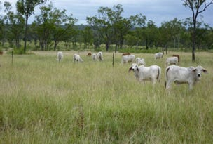 """""""RED BLUFF"""" Flinders Highway, Charters Towers, Qld 4820"""