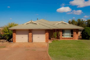 27 Cadia Place Cadonia Estate, Wuuluman, NSW 2820