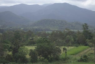 Lot 210 Owens Creek Loop Road, Owens Creek, Qld 4741