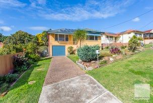 3 Stevenson Avenue, Mayfield, NSW 2304