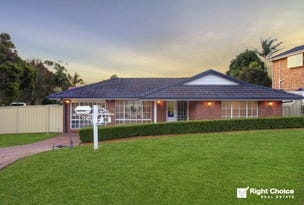 20 Severn Place, Albion Park, NSW 2527