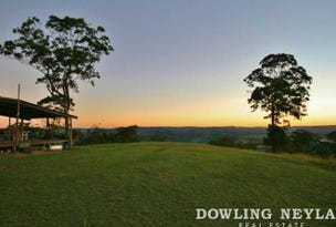 1033 Black Mountain Road, Federal, Qld 4568