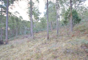 Lot 3 Bluff Road, Elderslie, Tas 7030