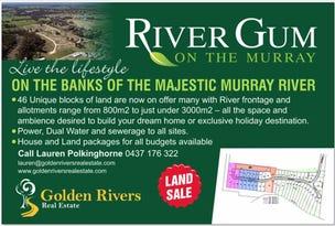 1-31/1 RiverGum Drive, Barham, NSW 2732
