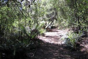 518 Doaks Road, Lilydale, Tas 7268