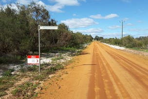 Lot 12 Nullilla Road, Breera, WA 6503
