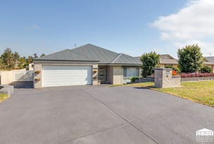 19 Laurie Drive, Raworth, NSW 2321