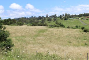Lot 1 Cnr Boundary Rd & Auckland St, Bega, NSW 2550