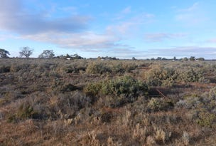 Lot 39 Canal Road, Renmark, SA 5341