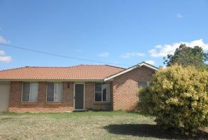 41 Flinders Street, Tamworth, NSW 2340