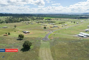 Lot 24 Horseshoe Place, Moore Creek, NSW 2340
