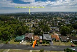 122 Alnwick Road, North Lambton, NSW 2299